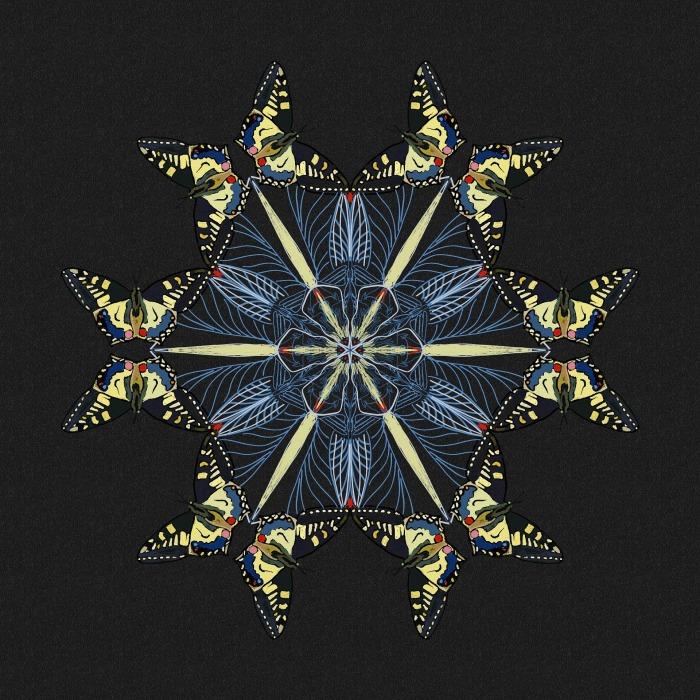 mandala-2401401_1920.jpg
